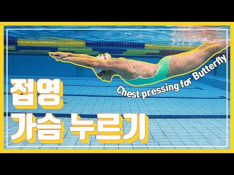 """[접영 강좌] 접영의 핵심  """"가슴누르기""""  !필수 시청! (how to press the chest for Butterfly)"""