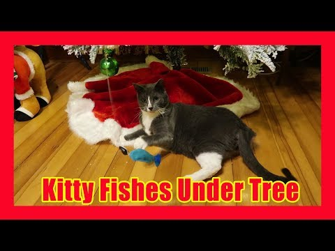 Meesha the Kitty Cat Fishes Underneath the Christmas Tree
