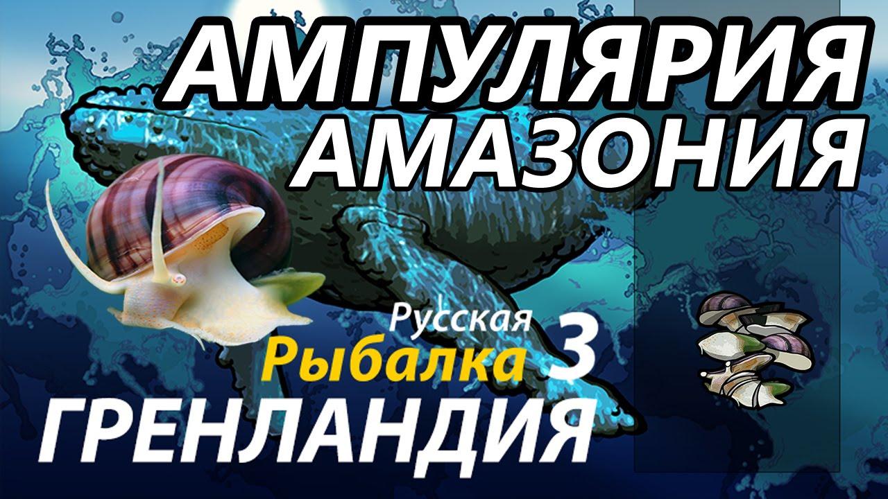 Ампулярия Амазония / РР3 [ Русская Рыбалка 3,9 Гренландия ]