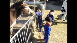 CLUBKAS Actie Rabobank #VVS Kinderboerderij OMMEN