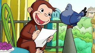 Georges le Petit Singe 🐵L'arbre à Pigeons 🐵Saison 1 Épisode Complet 🐵Dessin Animé