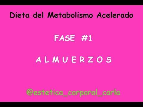 dieta del metabolismo acelerado pdf resumen