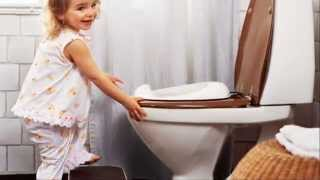 Potty Seat for Toilet : BABYBJORN Toilet Trainer