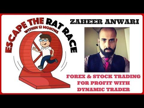 Zaheer anwari forex