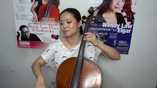 SHAPE OF YOU - ED SHEERAN | Instrumental Cello Cover