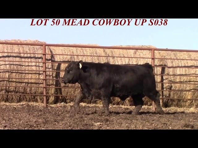 Mead Farms Lot 50