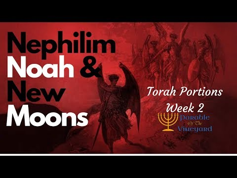 Torah Portions  Nephilim Noah and New Moons  W Sean and Lindsey   Week 2