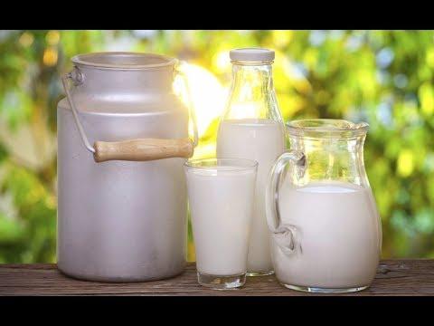 Аллергология - анализ на пищевые и респираторные аллергены