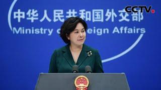 中国外交部:美国冒天下之大不韪阻挠安理会就巴以局势发声  《中国新闻》CCTV中文国际 - YouTube