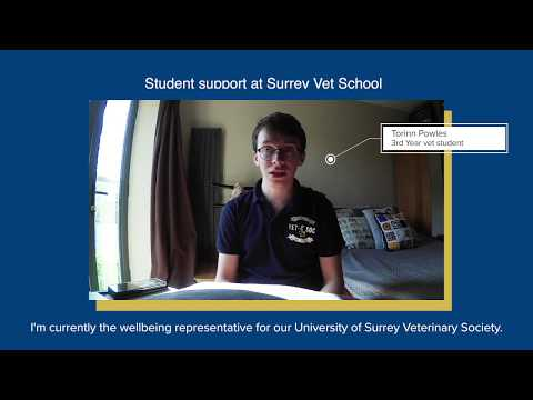Play video: School of Veterinary Medicine: Admissions – the student perspective | University of Surrey