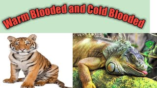 Warm Blooded and Cold Blooded Animals by Vikas Kaushal Sir