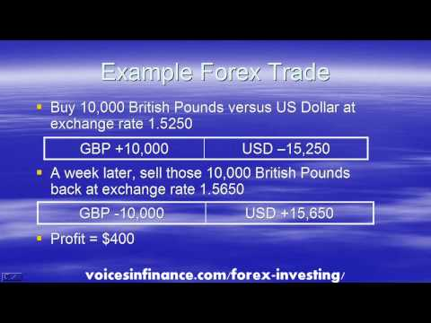 Guide to Forex Investing for Beginners