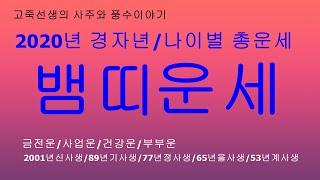 2020년 경자년 뱀띠운세/새해운세/신년운세/토정비결