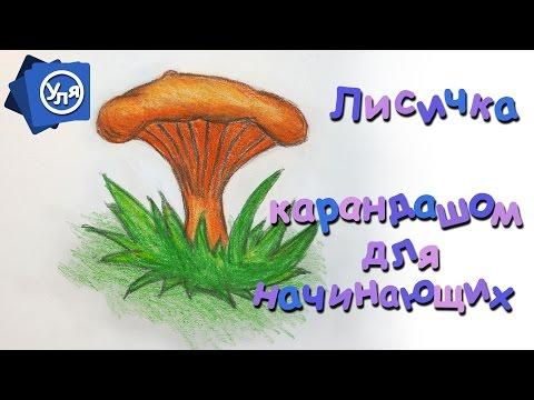 Как нарисовать лисичку гриб