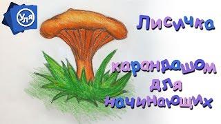 Рисунки карандашом поэтапно // Как нарисовать грибы Лисички(Рисунки карандашом поэтапно // Как нарисовать грибы #Лисички https://youtu.be/wAuaX7cd9Ak Сегодня давайте нарисуем осенн..., 2016-08-17T16:12:49.000Z)