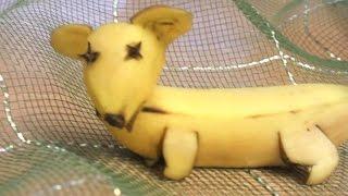 карвинг  из банана  собака украшение праздничного стола детский стол