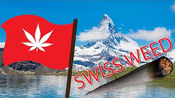Everything You Need To Know About Swiss Weed