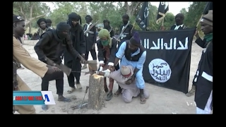 Download Boko Haram Series