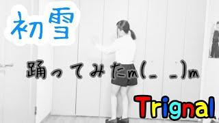 Trignal - 初雪