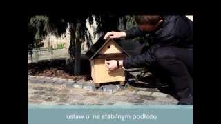 Trzmiele w ogrodzie - domek z trzmielami - WIOSNA 2014
