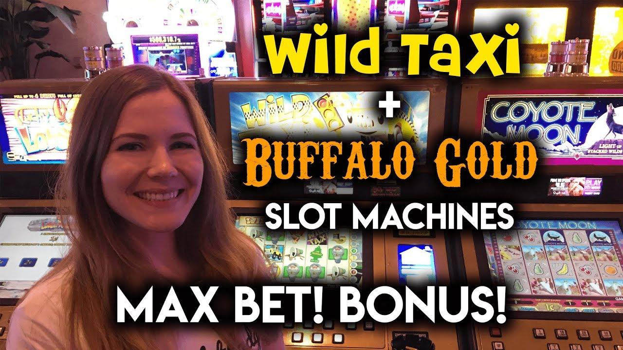 Wild taxi slot machine max bet buffalo gold bonus youtube wild taxi slot machine max bet buffalo gold bonus publicscrutiny Images