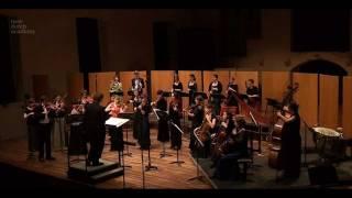 """C.P.E. Bach """"Symphony No. 1 in D - Allegro di molto"""" The New Dutch Academy"""