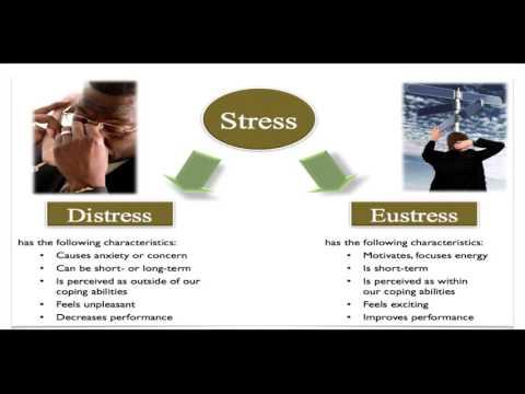 the-secret-to-handling-stress----eustress