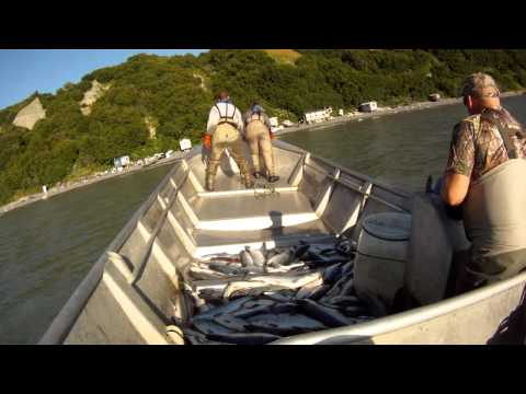 Commercial Salmon Fishing In Cook Inlet Alaska