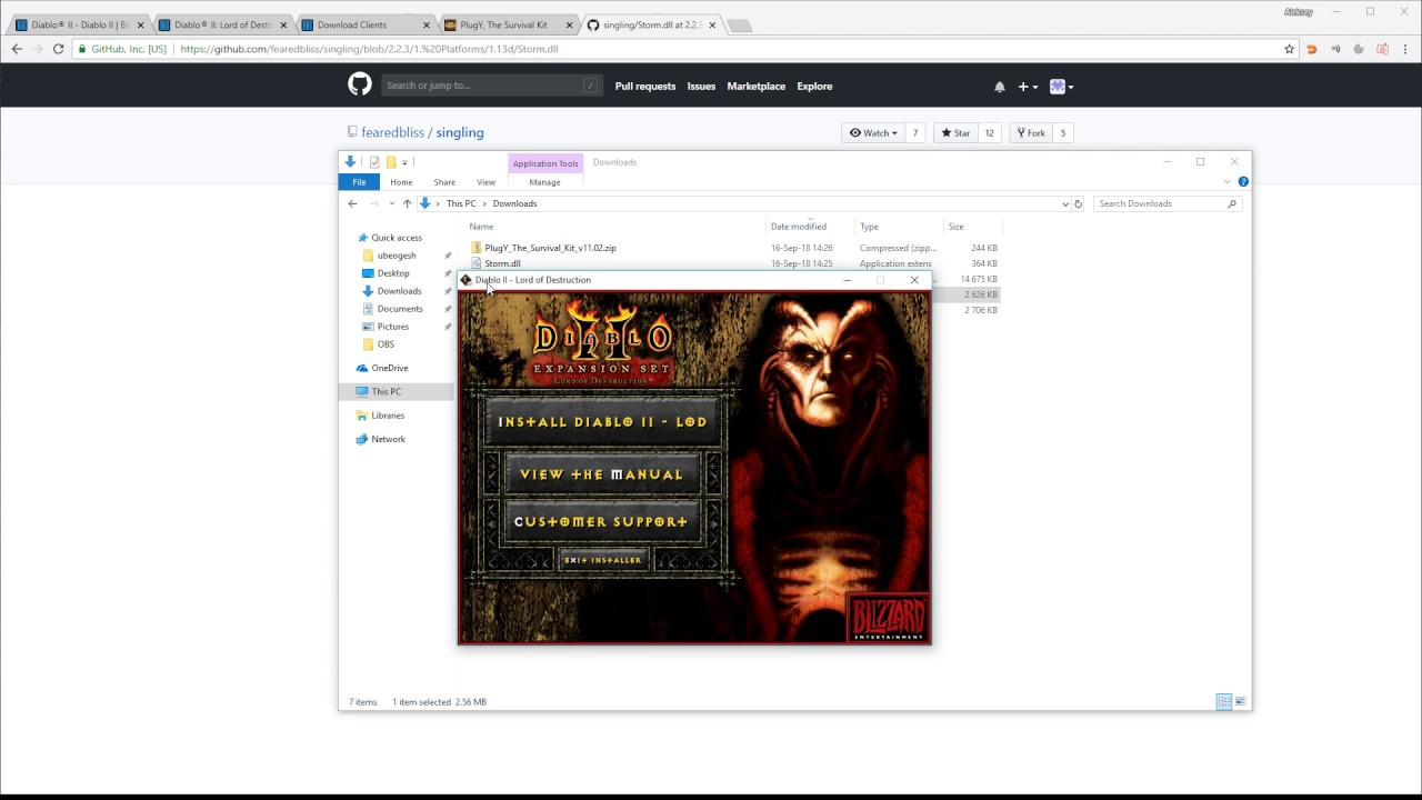 How to Install Diablo 2 and PlugY