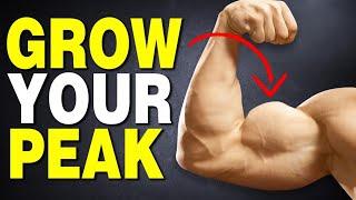 Top 4 Arm Exercises for BIGGER BICEPS PEAKS