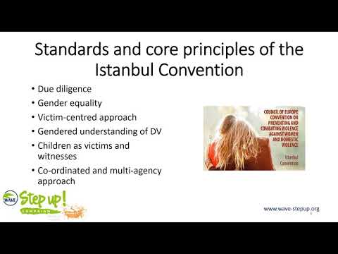 Legal tools used for implementing the Istanbul Convention