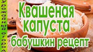 НАСТОЯЩАЯ КВАШЕНАЯ КАПУСТА!БАБУШКИН РЕЦЕПТ!(В этом видео я покажу очень вкусный и простой рецепт квашенной капусты по-деревенски., 2016-10-22T14:32:30.000Z)