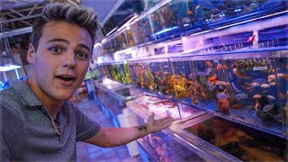 THE LARGEST FISH STORE!!! *ANIMAL UPDATE*