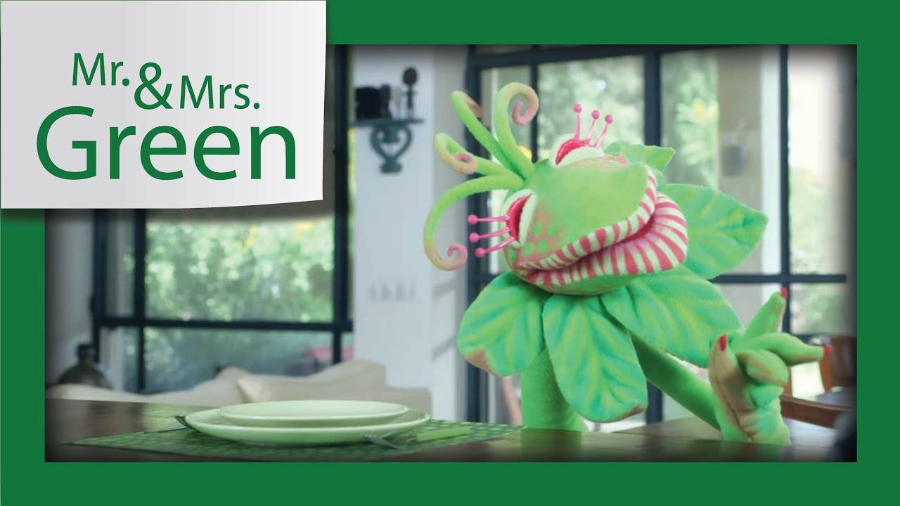 Mr Mrs Green