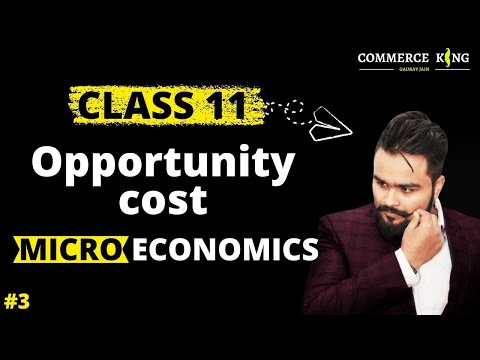 opportunity cost(Class 12 microeconomics ), economics on your tips video 3