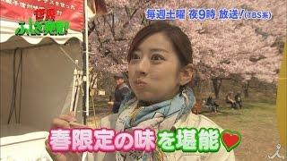 土曜よる9時 『世界ふしぎ発見!』 3月18日放送のミステリーハンター 中...