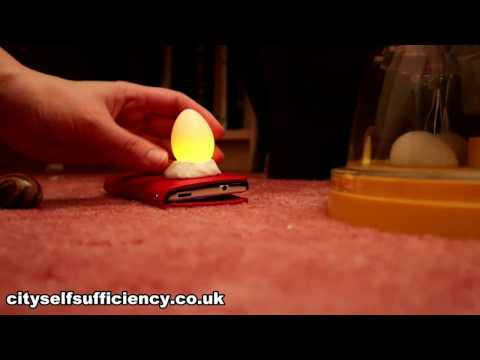 Super Simple Way To Candle Eggs Using A Mobile Phone