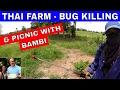 Thailand-Farm | Fruit-Spraying