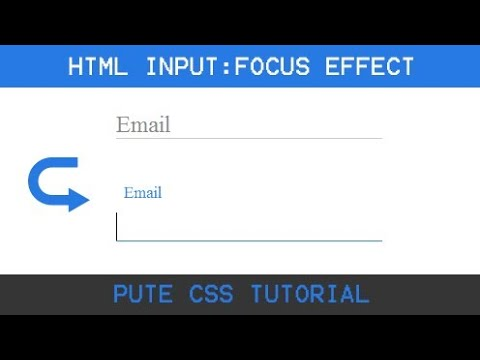 HTML Input Focus Effect || Using HTML And CSS
