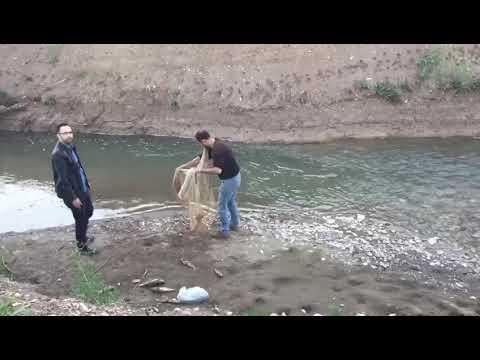 Sivas serpme balık avı 2018