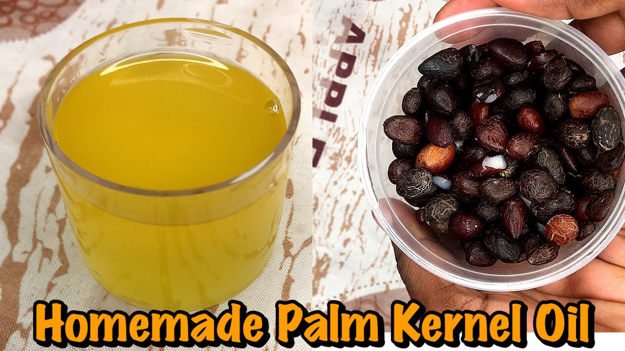 Download How to Make Clear Organic Palm Kernel Oil   The Best Alternative to Coconut Oil