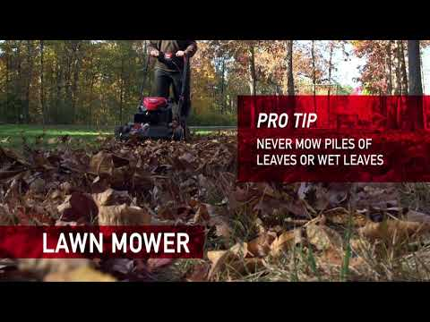 Five ways to clean up leaves from your yard this season | Right In Your Backyard | Troy-Bilt