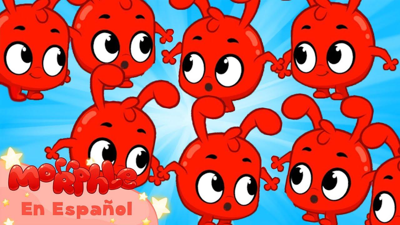 Morphle en Español | Múltiples Morphles | Caricaturas para Niños | Caricaturas en Español