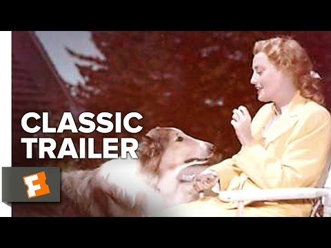 The Sun Comes Up (1949) Official Trailer - Jeanette MacDonald, Lloyd Nolan Movie HD