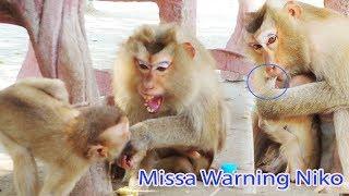 Oh My Good Why Mama Nissa Warning To Bite Niko 's Finger And Warm Cute Girl Rozana Like that ?