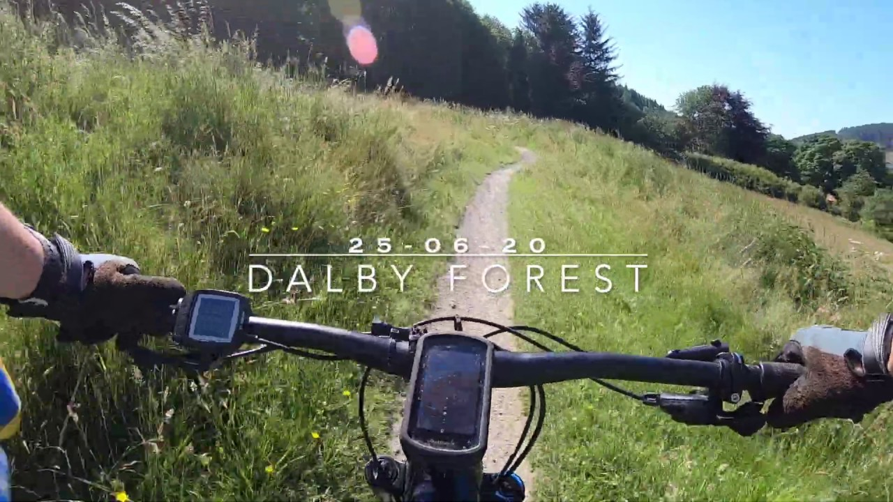 Dalby Forest 26 06 20