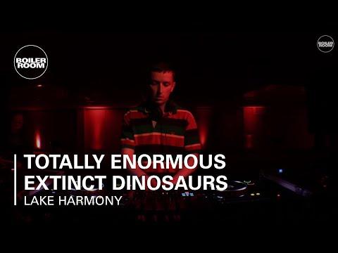 Totally Enormous Extinct Dinosaurs Boiler Room Ray-Ban x Boiler Room Weekender | DJ Set