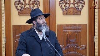 הרב רונן שאולוב - בחירות 2019 חוזרות !!! ימין VS שמאל | ערכים ותורה VS בושה וכפירה !!!