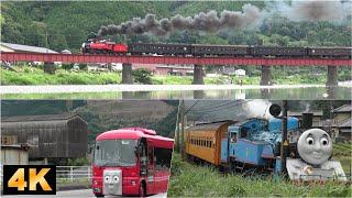 Oigawa-railway,Thomas the Tank Engine & Friends/2019年6月~7月 大井川鉄道きかんしゃトーマス