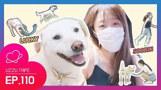 "[UZZU TAPE] EP.110 Behind ""Idol dog agility contest"" ofSOOBIN from Lucky's family!]"